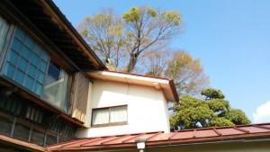 日本家屋,中古住宅